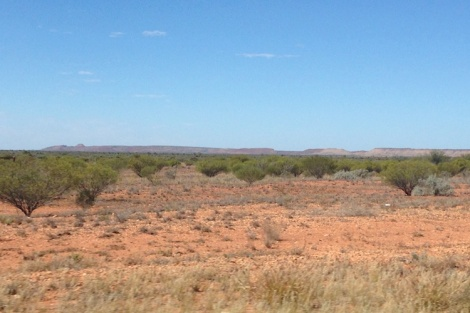 Michelle Lunicke Australia bush